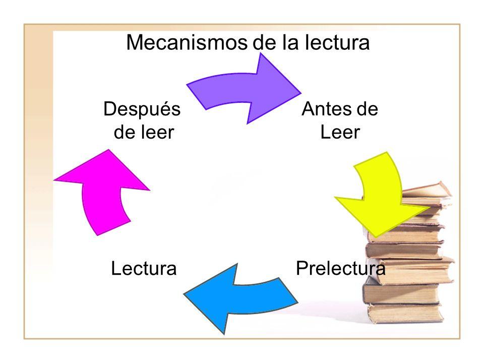 Antes de Leer PrelecturaLectura Después de leer Mecanismos de la lectura