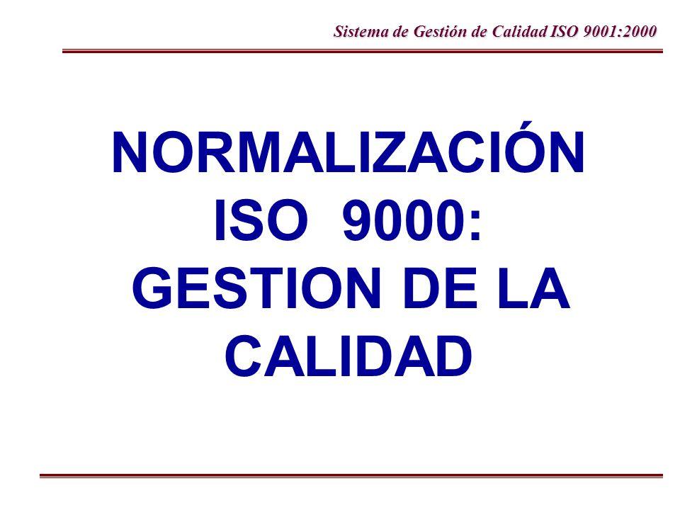Sistema de Gestión de Calidad ISO 9001:2000 Gestión de la calidad Modelo de Procesos ISO 9001:2000 Clientes Medición, análisis y mejora Gestión de los recursos Requerimientos Entradas Mejora Continua del Sistema de Gestión de la Calidad Producto Clientes Satisfacción Responsabilidad de la dirección Salidas Realización del producto