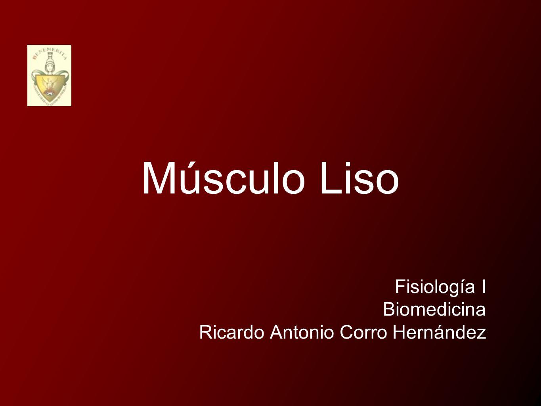 Músculo Liso Fisiología I Biomedicina Ricardo Antonio Corro Hernández