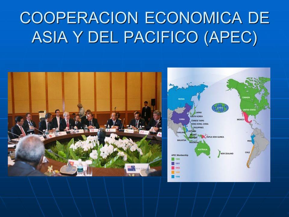 COOPERACION ECONOMICA DE ASIA Y DEL PACIFICO (APEC)
