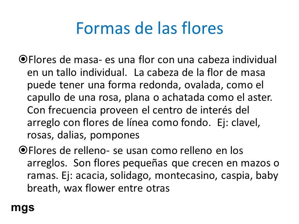 Formas de las flores Flores de masa- es una flor con una cabeza individual en un tallo individual. La cabeza de la flor de masa puede tener una forma