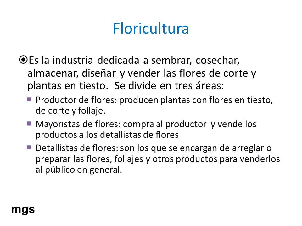 Floricultura Es la industria dedicada a sembrar, cosechar, almacenar, diseñar y vender las flores de corte y plantas en tiesto. Se divide en tres área
