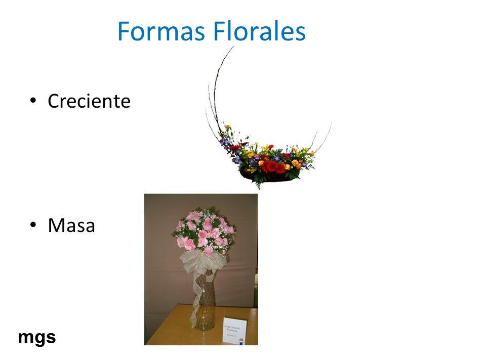 Formas Florales Creciente Masa mgs