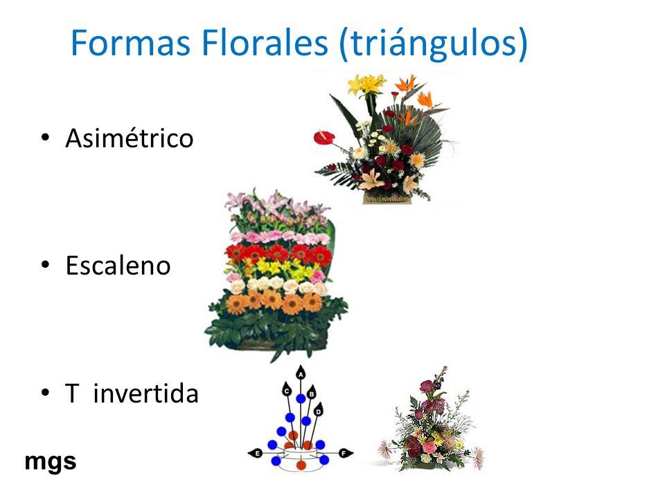 Formas Florales (triángulos) Asimétrico Escaleno T invertida mgs