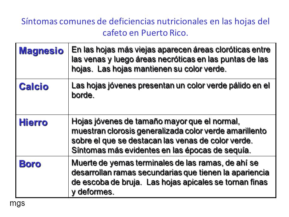Guía para la fertilización del Cafeto Año Onzas por árbol Intervalos de aplicación Análisis(N,P,K,Mg) 1 2 a 3 3 meses 10-10-5-3 +EM 2 4 a 5 3 meses 10-10-5-3 +EM 9-10-5-3 +EM 3 6 a 8 4 meses 15-5-15-3 +EM 12-6-16-3 +EM 10-5-15-3 +EM 12-5-15-3 +EM 4 8 a 16 4 meses Igual al tercer año mgs