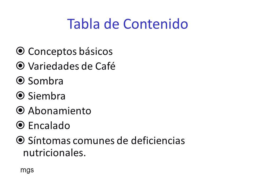 Tabla de contenido Guía para la fertilización del Cafeto Poda Malezas Insectos Enfermedades Nemátodos Recogida del Café mgs