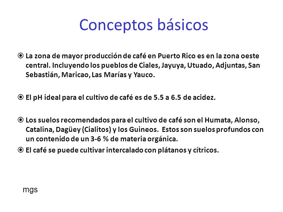 Variedad: Coffea arabica- es el más que se cultiva en Puerto Rico.
