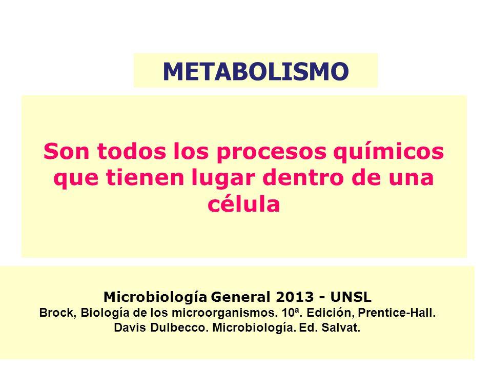 Por qué es importante estudiar el metabolismo de los microorganismos?