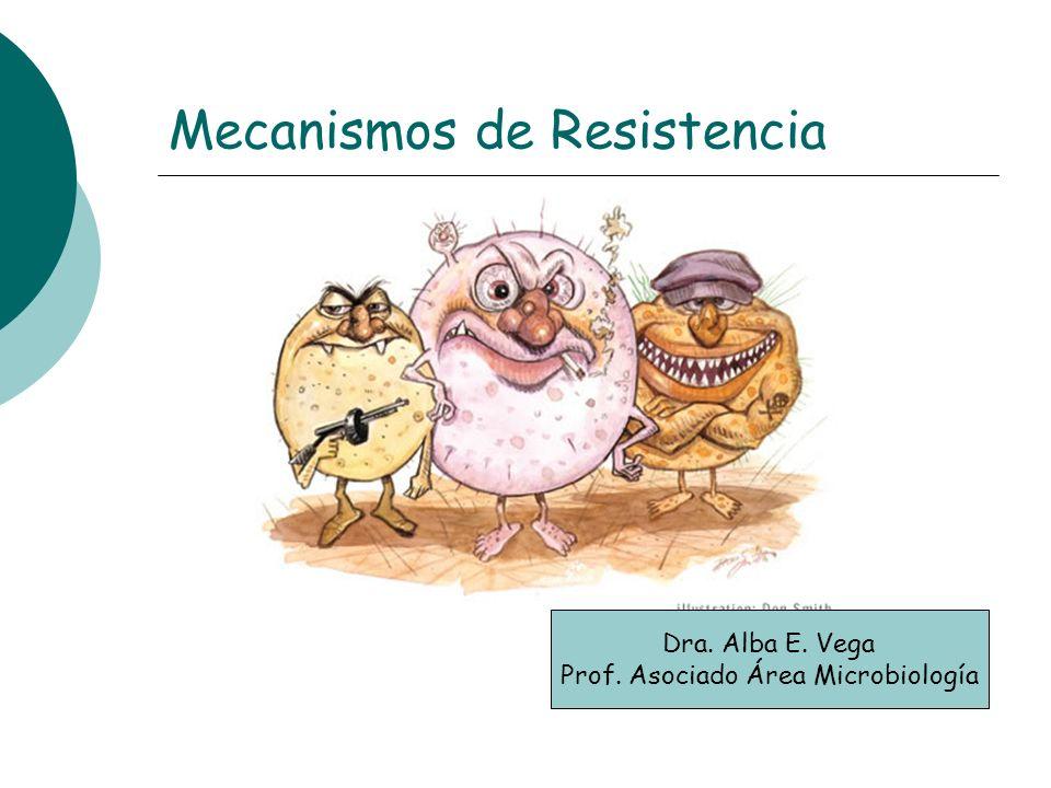 Mecanismos de Resistencia Dra. Alba E. Vega Prof. Asociado Área Microbiología