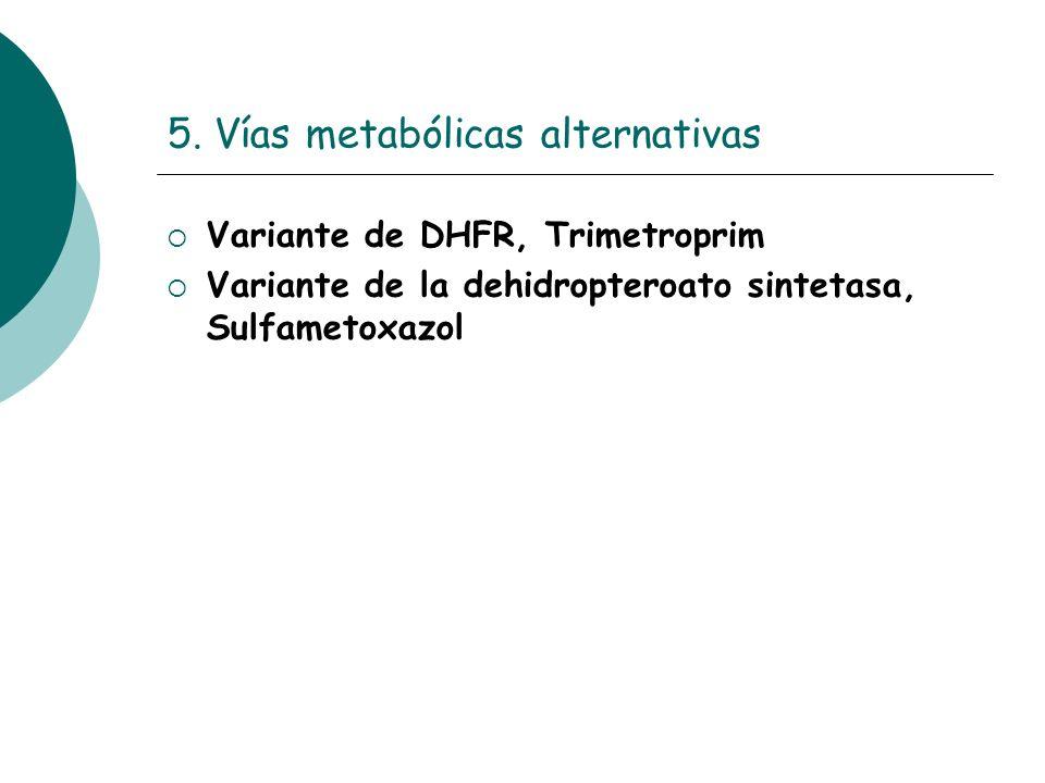 5. Vías metabólicas alternativas Variante de DHFR, Trimetroprim Variante de la dehidropteroato sintetasa, Sulfametoxazol