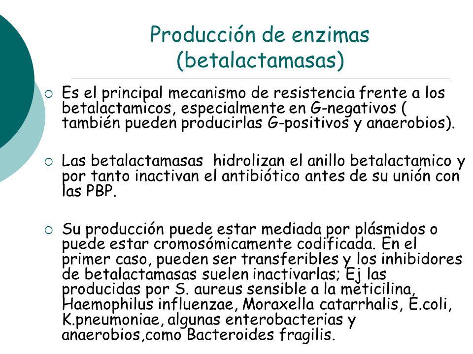 Producción de enzimas (betalactamasas) Es el principal mecanismo de resistencia frente a los betalactamicos, especialmente en G-negativos ( también pu