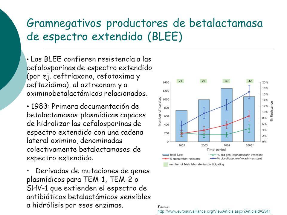 Las BLEE confieren resistencia a las cefalosporinas de espectro extendido (por ej. ceftriaxona, cefotaxima y ceftazidima), al aztreonam y a oximinobet