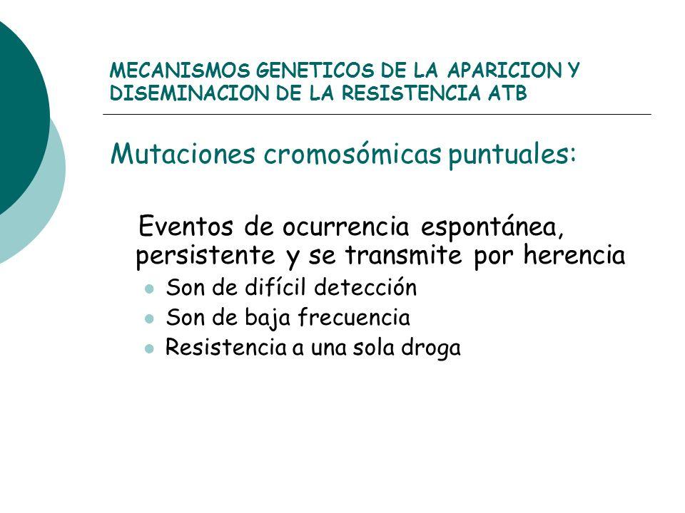MECANISMOS GENETICOS DE LA APARICION Y DISEMINACION DE LA RESISTENCIA ATB Mutaciones cromosómicas puntuales: Eventos de ocurrencia espontánea, persist