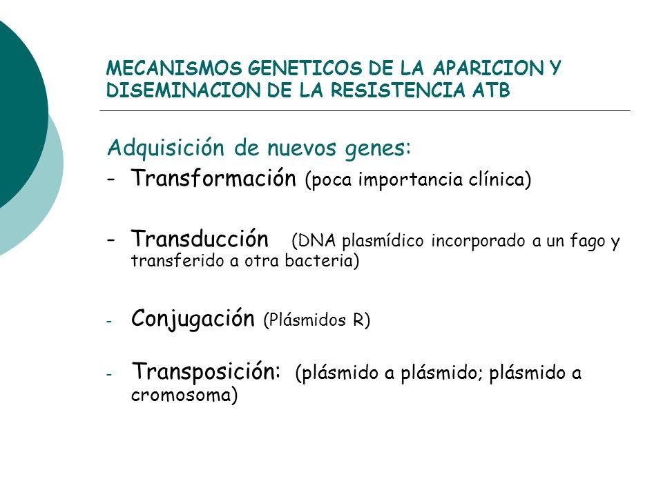 MECANISMOS GENETICOS DE LA APARICION Y DISEMINACION DE LA RESISTENCIA ATB Adquisición de nuevos genes: - Transformación (poca importancia clínica) - T