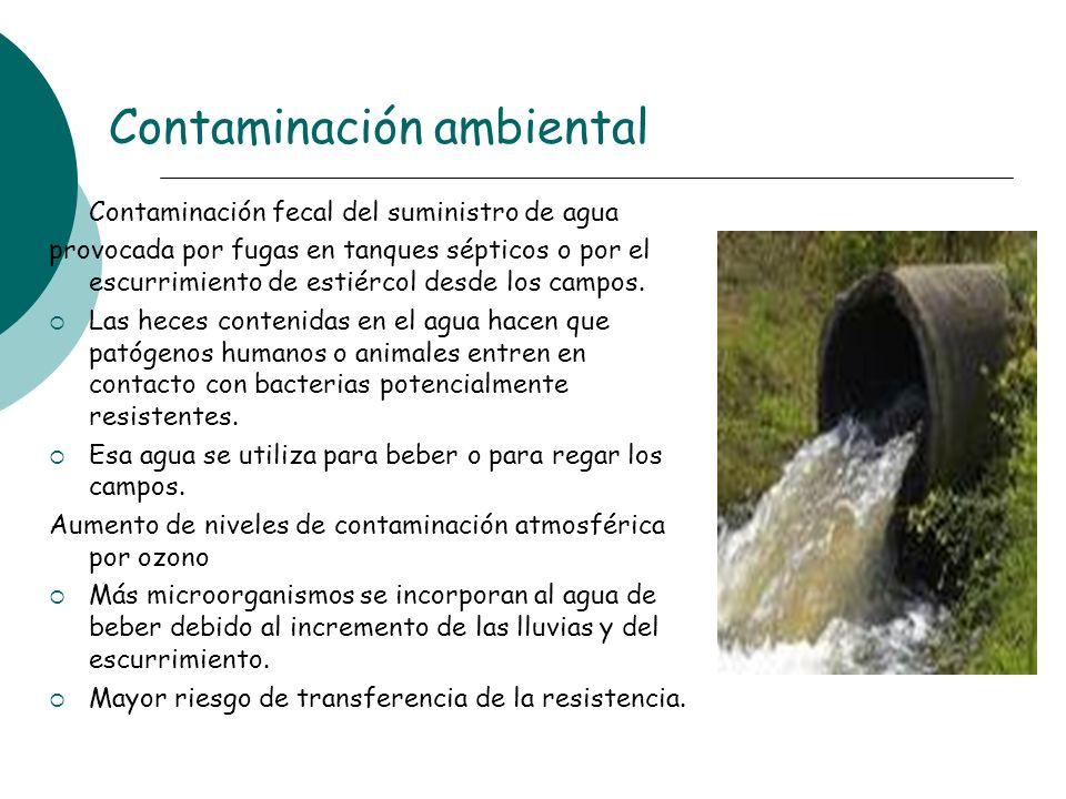 Contaminación ambiental Contaminación fecal del suministro de agua provocada por fugas en tanques sépticos o por el escurrimiento de estiércol desde l