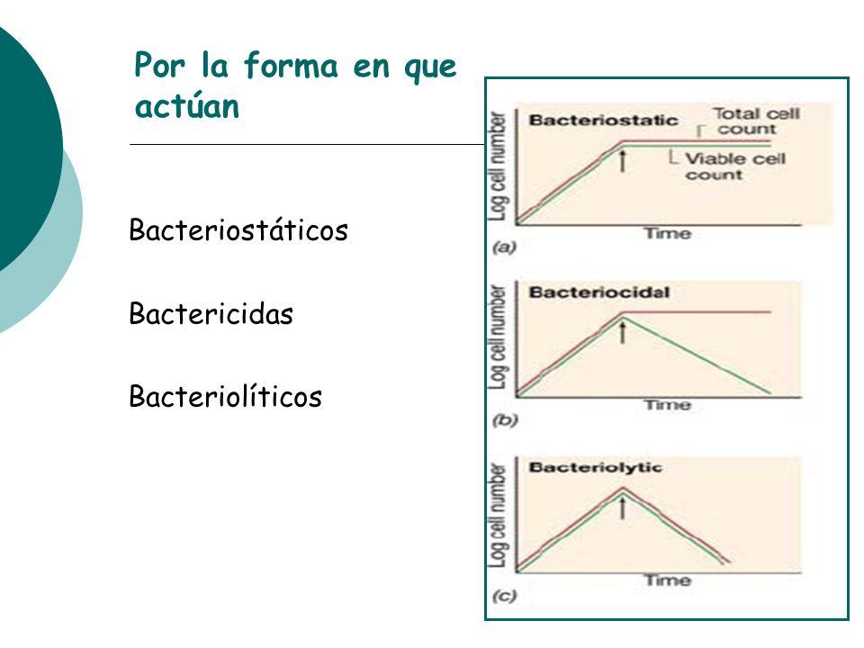 Por la forma en que actúan Bacteriostáticos Bactericidas Bacteriolíticos