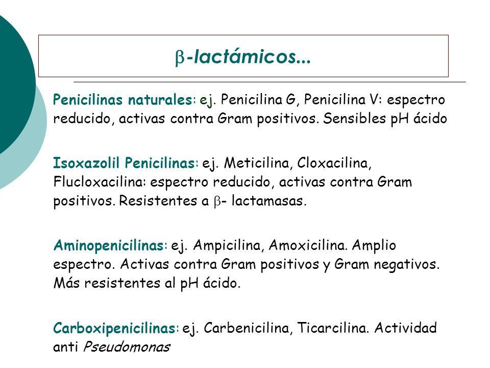Penicilinas naturales: ej. Penicilina G, Penicilina V: espectro reducido, activas contra Gram positivos. Sensibles pH ácido Isoxazolil Penicilinas: ej