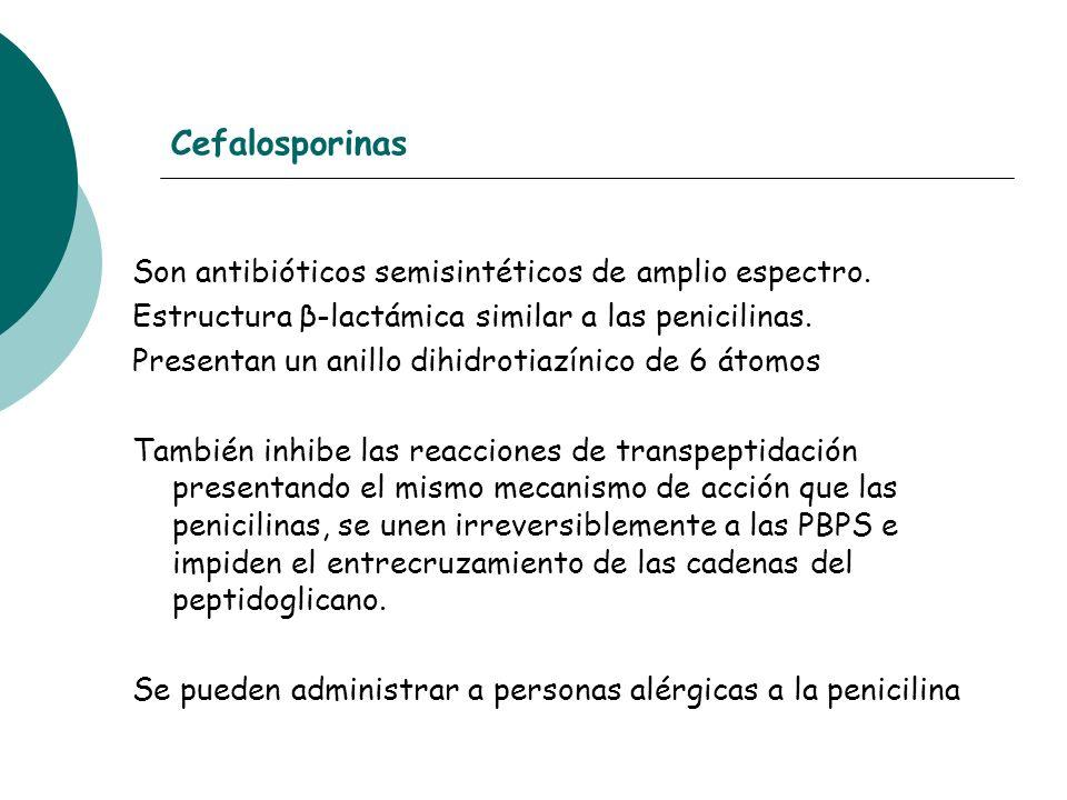 Cefalosporinas Son antibióticos semisintéticos de amplio espectro. Estructura β-lactámica similar a las penicilinas. Presentan un anillo dihidrotiazín