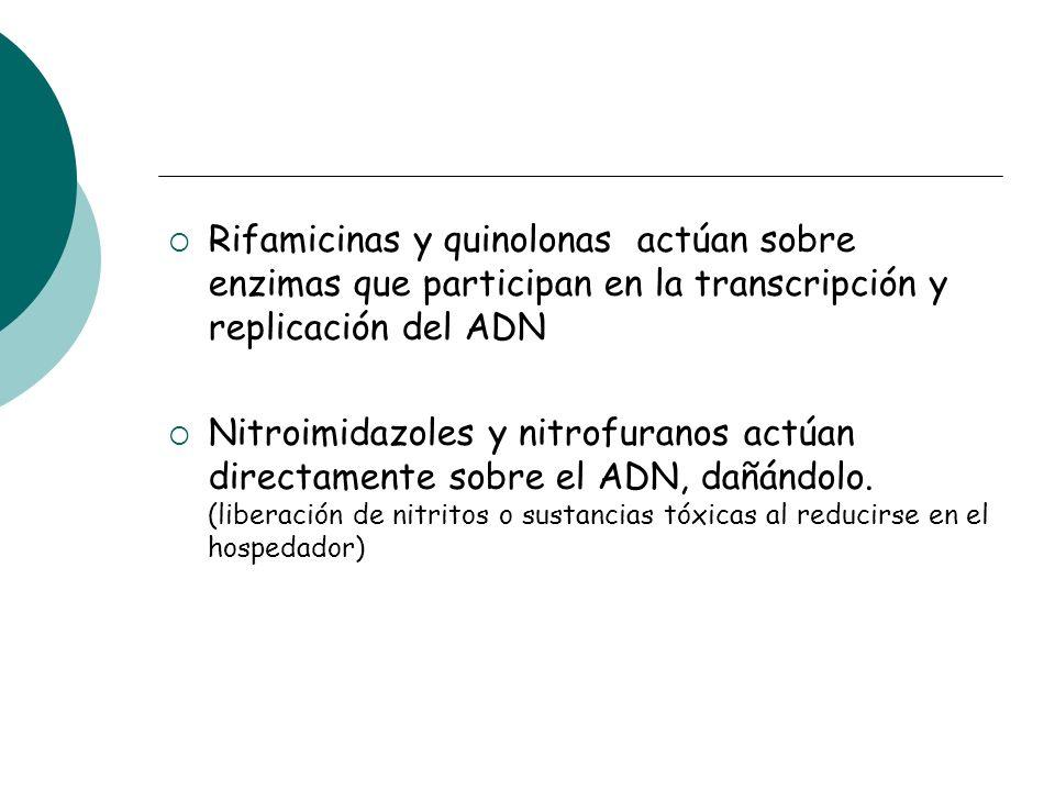 Rifamicinas y quinolonas actúan sobre enzimas que participan en la transcripción y replicación del ADN Nitroimidazoles y nitrofuranos actúan directame