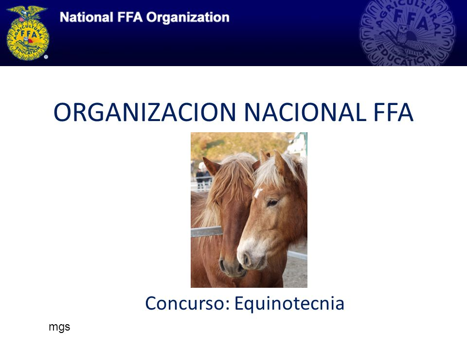 ORGANIZACION NACIONAL FFA Concurso: Equinotecnia mgs