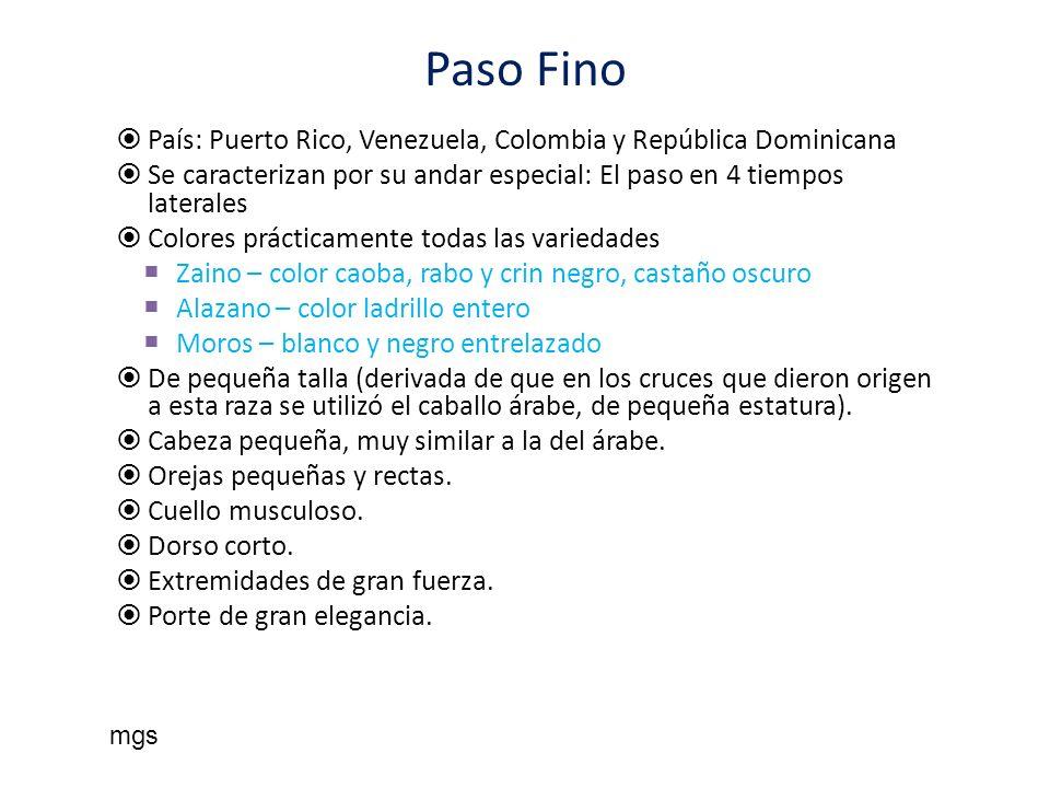 Paso Fino País: Puerto Rico, Venezuela, Colombia y República Dominicana Se caracterizan por su andar especial: El paso en 4 tiempos laterales Colores