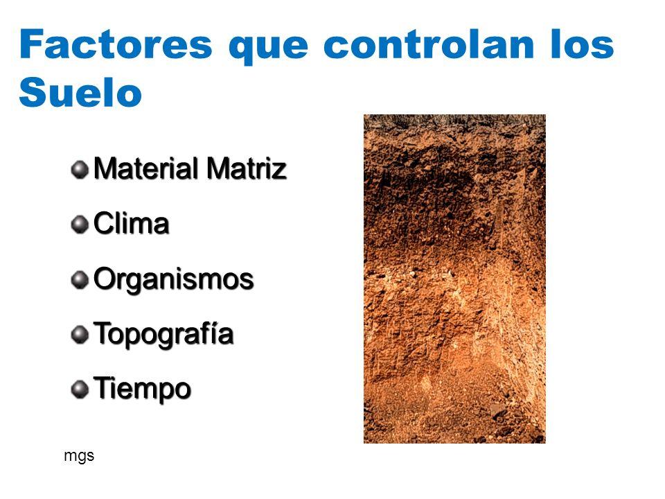 Factores que controlan los Suelo Material Matriz ClimaOrganismosTopografíaTiempo mgs