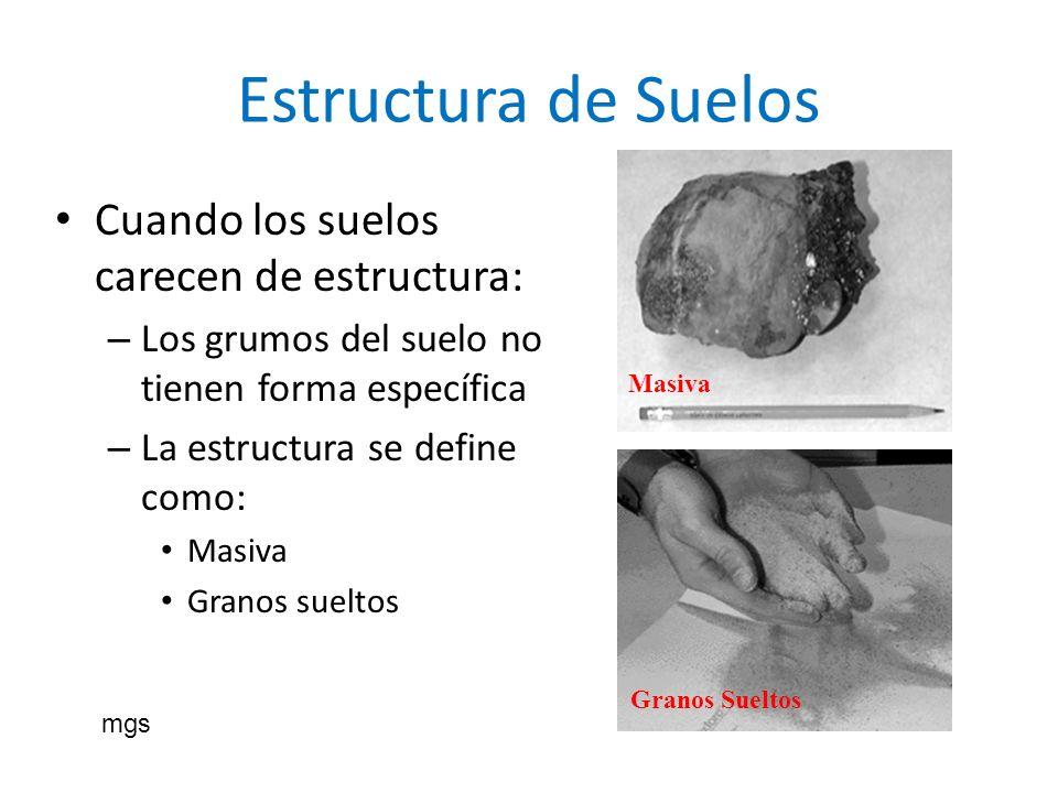 Estructura de Suelos Cuando los suelos carecen de estructura: – Los grumos del suelo no tienen forma específica – La estructura se define como: Masiva