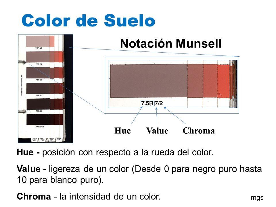 Color de Suelo Notación Munsell HueValueChroma Hue - posición con respecto a la rueda del color. Value - ligereza de un color (Desde 0 para negro puro