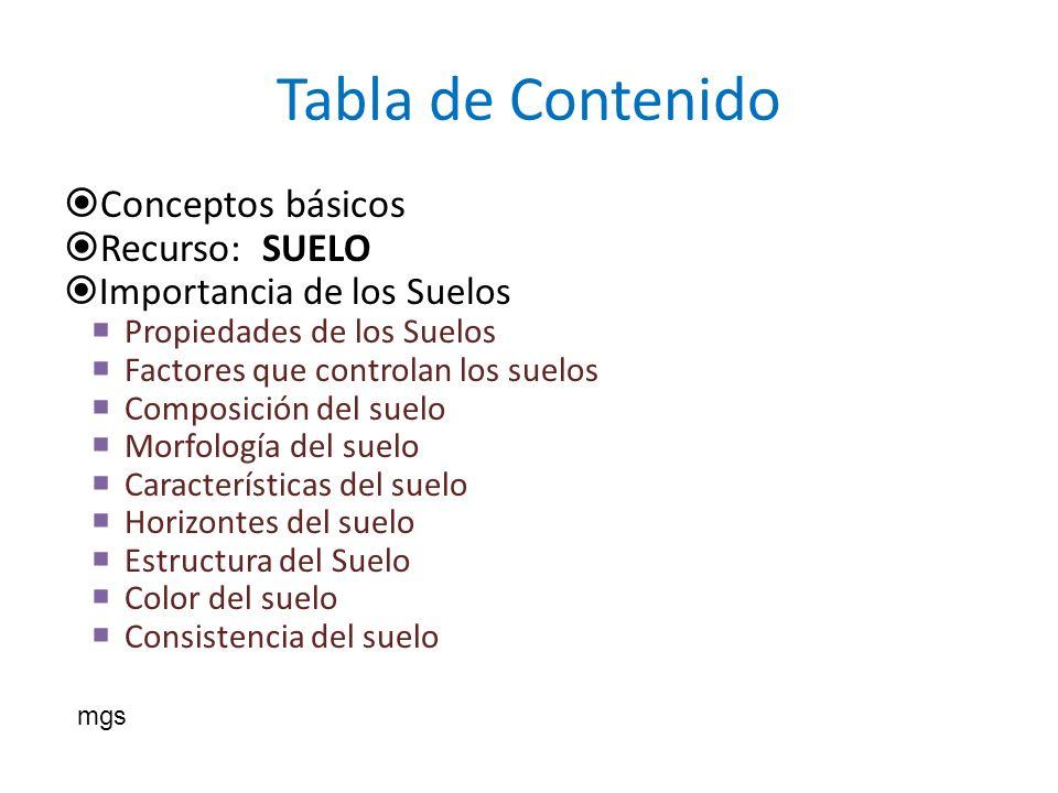 Tabla de Contenido Conceptos básicos Recurso: SUELO Importancia de los Suelos Propiedades de los Suelos Factores que controlan los suelos Composición