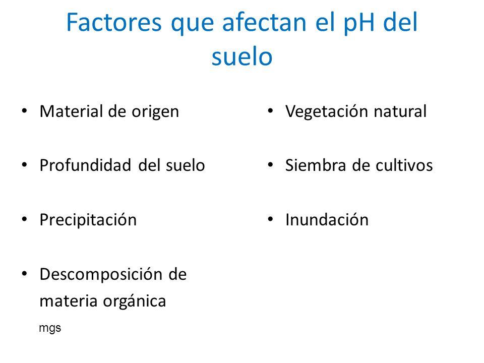 Factores que afectan el pH del suelo Material de origen Profundidad del suelo Precipitación Descomposición de materia orgánica Vegetación natural Siem