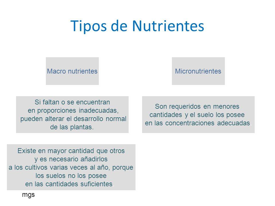 Tipos de Nutrientes Micronutrientes Son requeridos en menores cantidades y el suelo los posee en las concentraciones adecuadas. Macro nutrientes Si fa