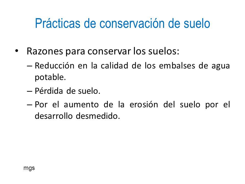 Prácticas de conservación de suelo Razones para conservar los suelos: – Reducción en la calidad de los embalses de agua potable. – Pérdida de suelo. –