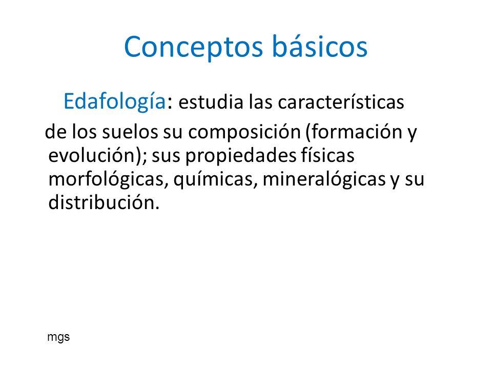 Conceptos básicos Edafología: estudia las características de los suelos su composición (formación y evolución); sus propiedades físicas morfológicas,