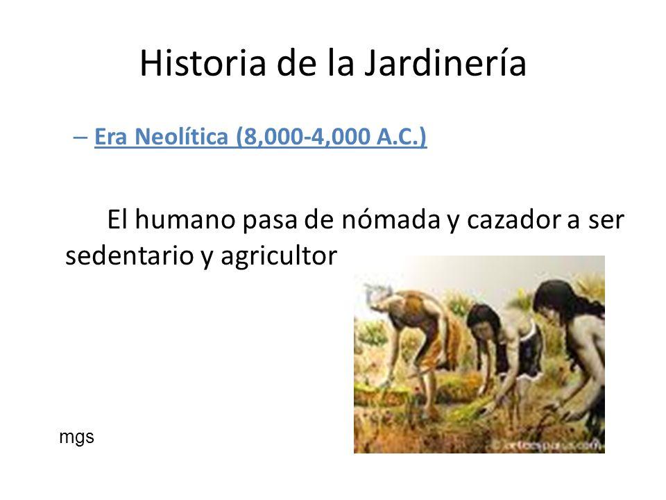 Historia de la Jardinería – Era Neolítica (8,000-4,000 A.C.) El humano pasa de nómada y cazador a ser sedentario y agricultor mgs