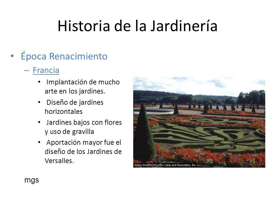 Historia de la Jardinería Época Renacimiento – Francia Implantación de mucho arte en los jardines. Diseño de jardines horizontales Jardines bajos con
