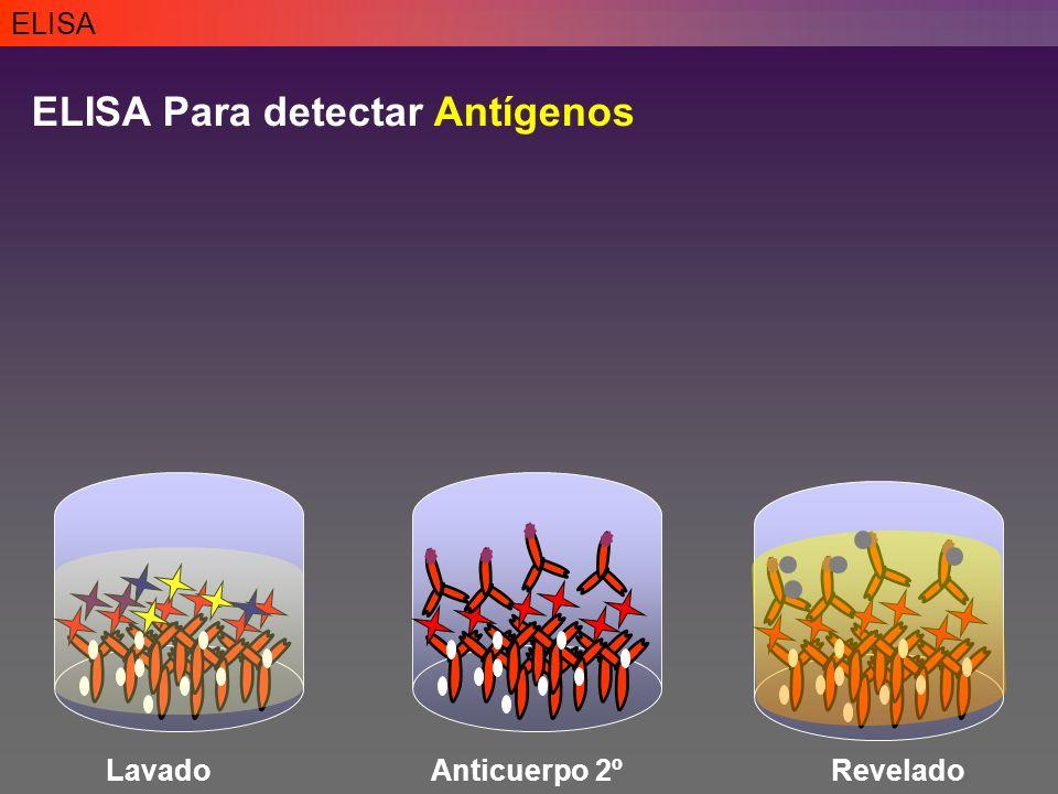 ELISA ELISA Para detectar Antígenos LavadoAnticuerpo 2ºRevelado
