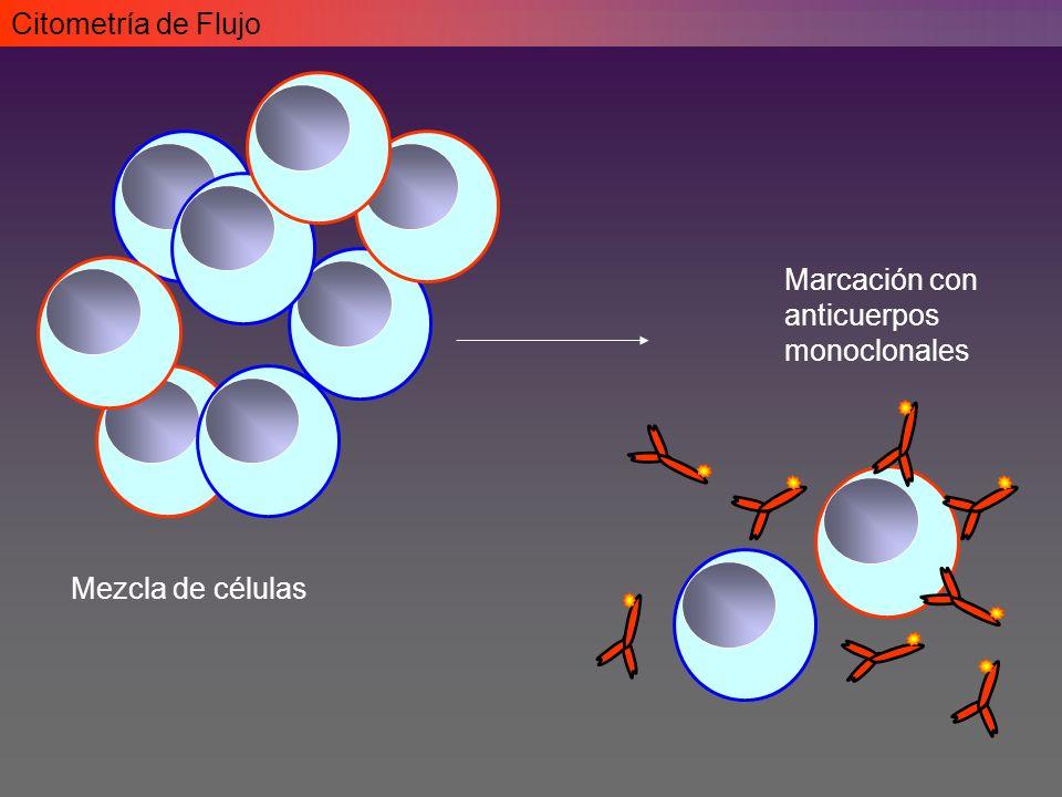 Citometría de Flujo Mezcla de células Marcación con anticuerpos monoclonales