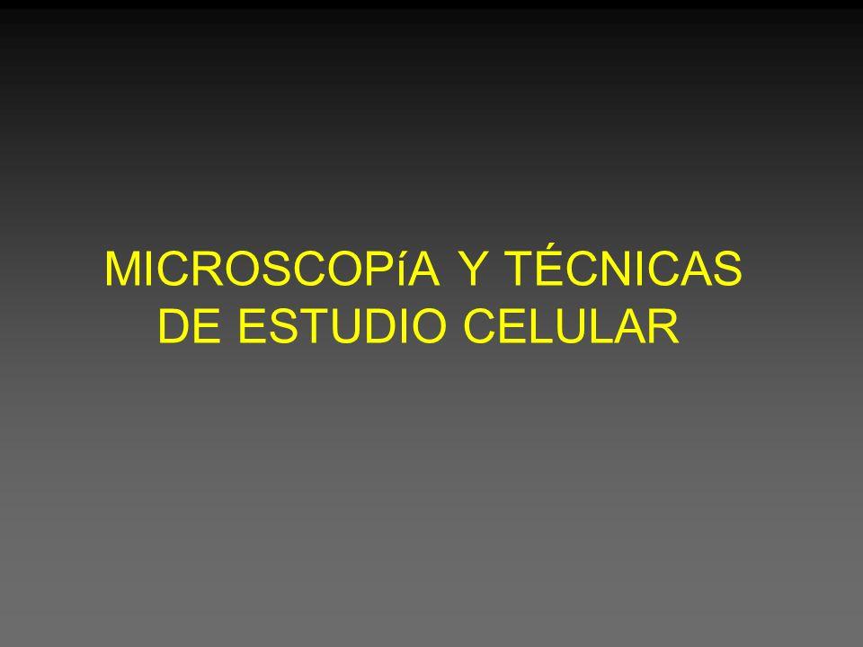 Tipos de microscopios Ópticos Electrónicos Campo claro Campo Oscuro Contraste de fase Confocal Fluorescencia Transmisión Barrido Microscopía -Resumen