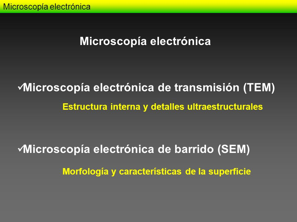 Microscopía electrónica Microscopía electrónica de transmisión (TEM) Microscopía electrónica de barrido (SEM) Microscopía electrónica Estructura inter