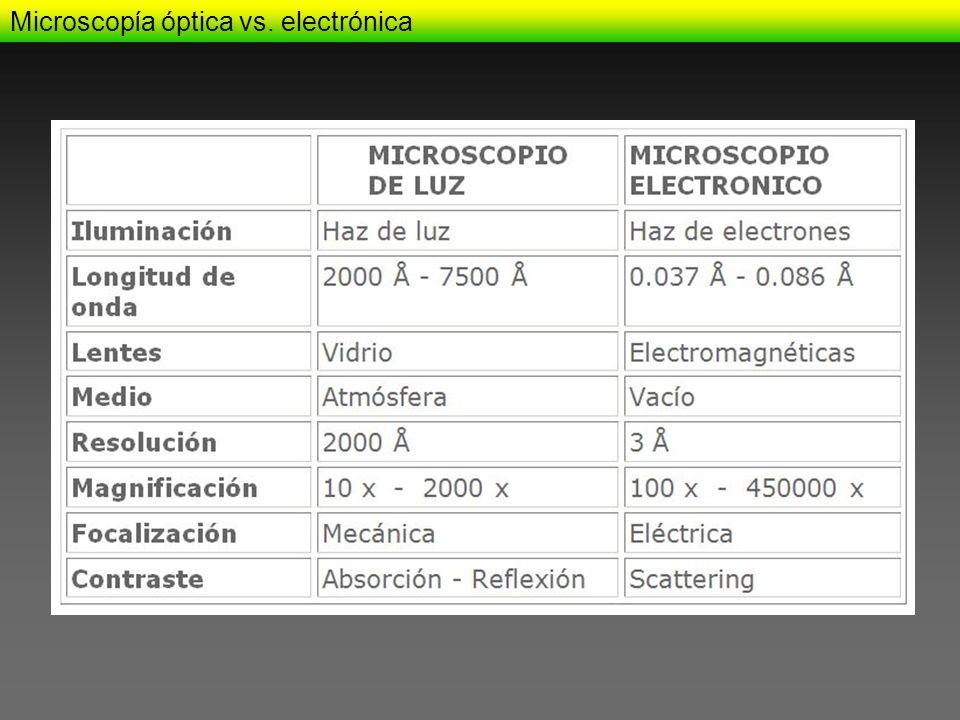 Microscopía óptica vs. electrónica