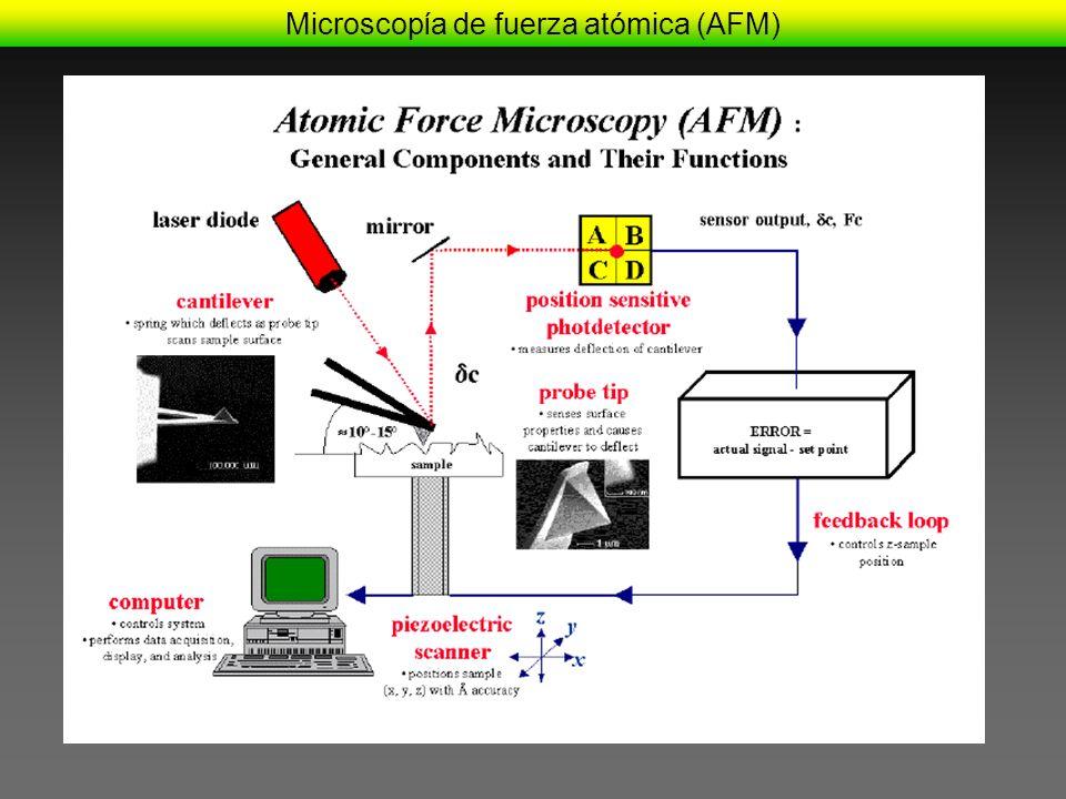 Microscopía de fuerza atómica (AFM)