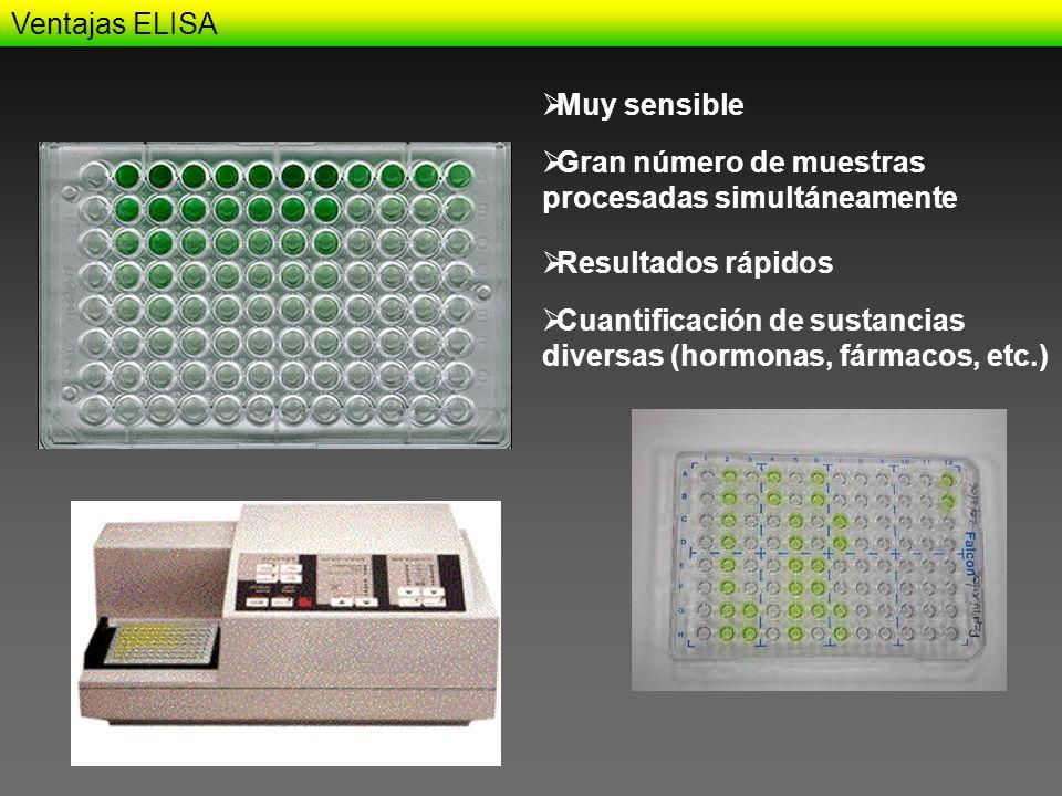 Ventajas ELISA Gran número de muestras procesadas simultáneamente Muy sensible Resultados rápidos Cuantificación de sustancias diversas (hormonas, fár