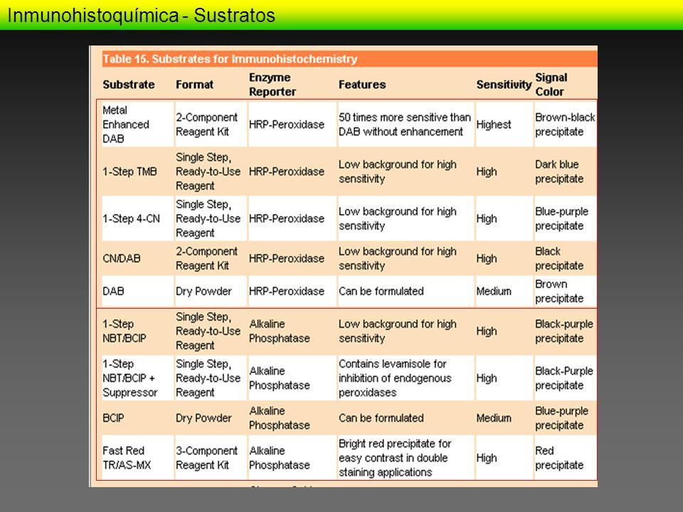 Inmunohistoquímica - Sustratos