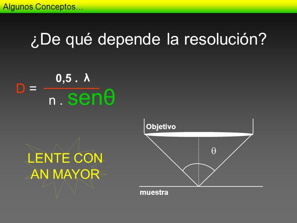 ¿De qué depende la resolución? Algunos Conceptos… 0,5. n. D = λ senθ Objetivo muestra LENTE CON AN MAYOR