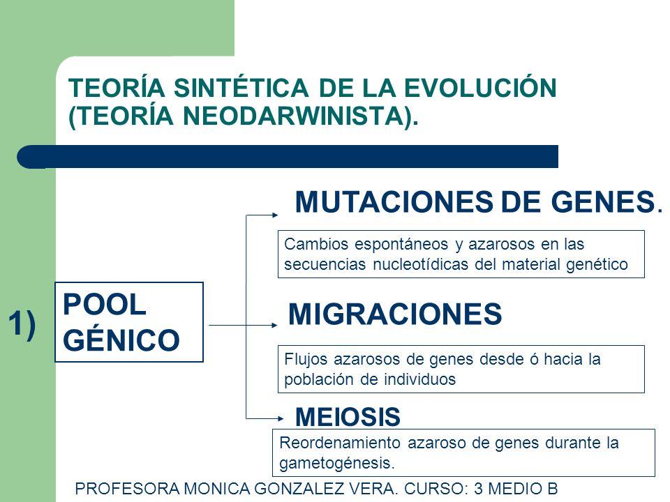 TEORÍA SINTÉTICA DE LA EVOLUCIÓN (TEORÍA NEODARWINISTA). PROFESORA MONICA GONZALEZ VERA. CURSO: 3 MEDIO B POOL GÉNICO MUTACIONES DE GENES. MIGRACIONES
