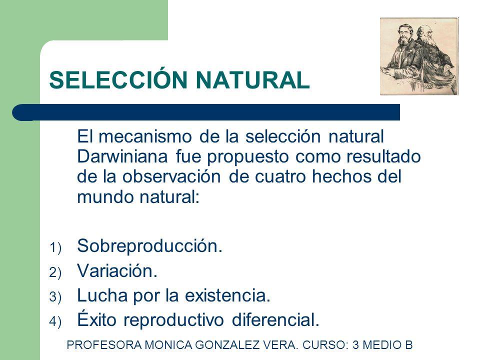 SELECCIÓN NATURAL El mecanismo de la selección natural Darwiniana fue propuesto como resultado de la observación de cuatro hechos del mundo natural: 1