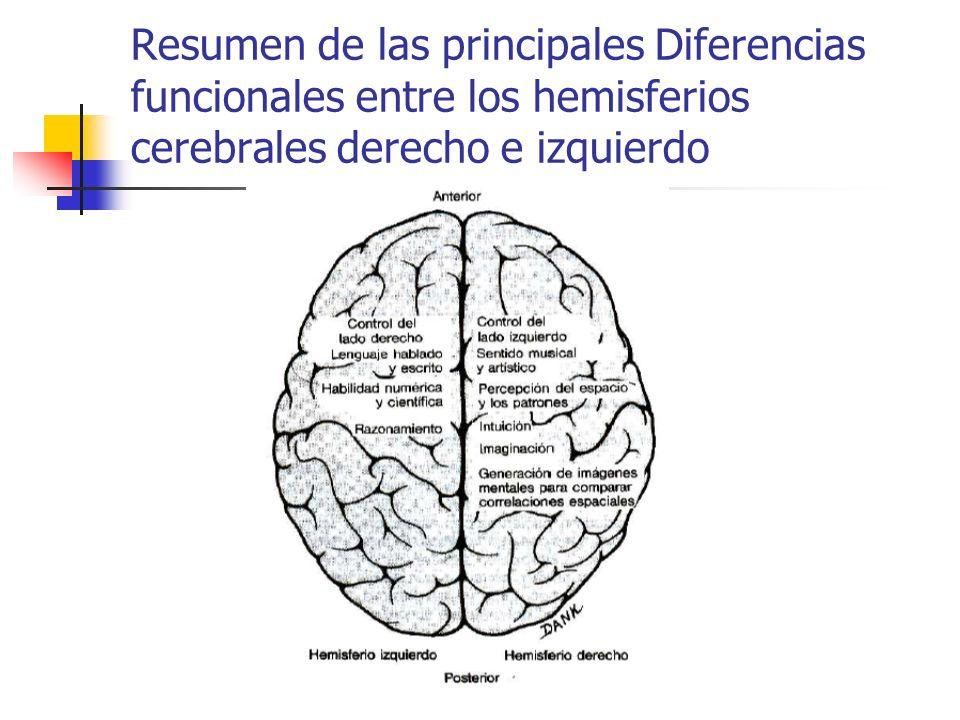 Resumen de las principales Diferencias funcionales entre los hemisferios cerebrales derecho e izquierdo