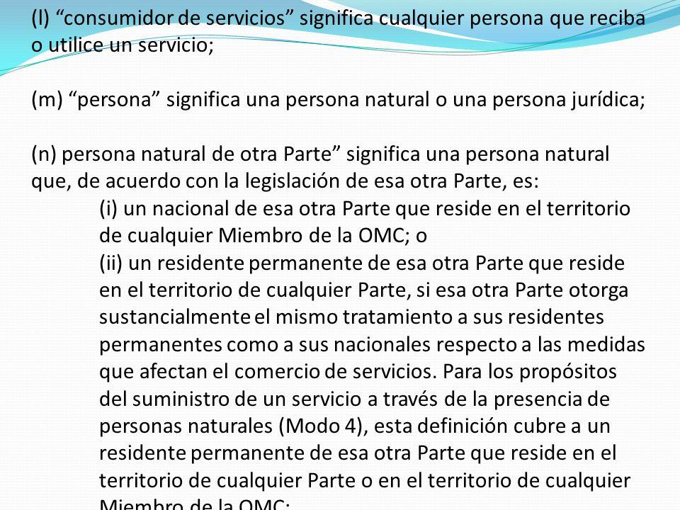 (l) consumidor de servicios significa cualquier persona que reciba o utilice un servicio; (m) persona significa una persona natural o una persona jurí