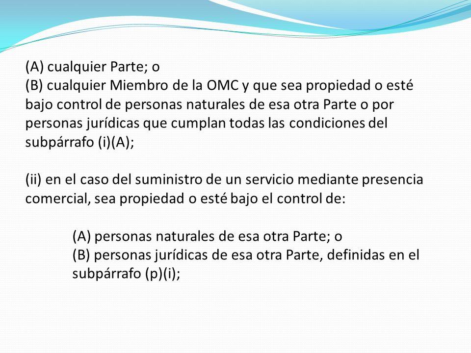 (A) cualquier Parte; o (B) cualquier Miembro de la OMC y que sea propiedad o esté bajo control de personas naturales de esa otra Parte o por personas