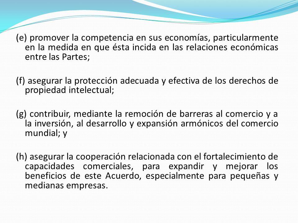 (e) promover la competencia en sus economías, particularmente en la medida en que ésta incida en las relaciones económicas entre las Partes; (f) asegu